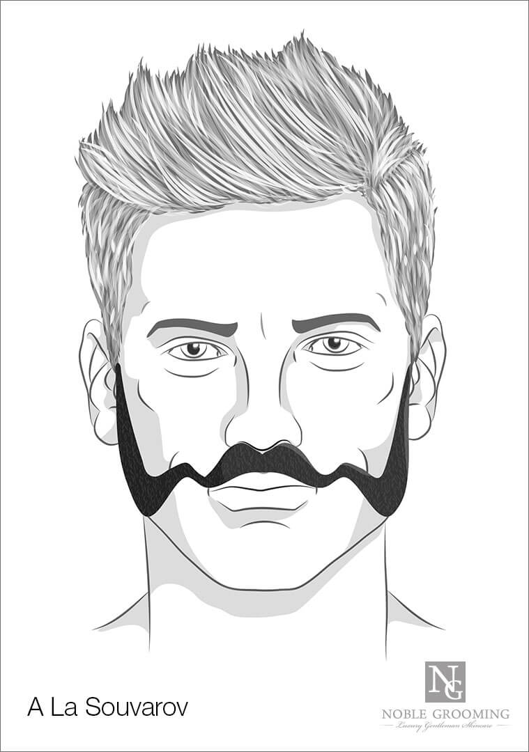A La Souvarov Beard Style