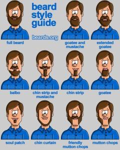 Beards Styles Guide